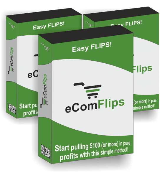 eCom Flips Review – EXACTLY Find Out How To Construct Your HOT