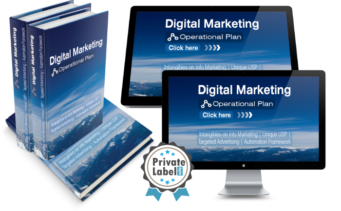 Digital Marketing Operational Handbook Review