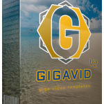 GIGAVID V2 Review