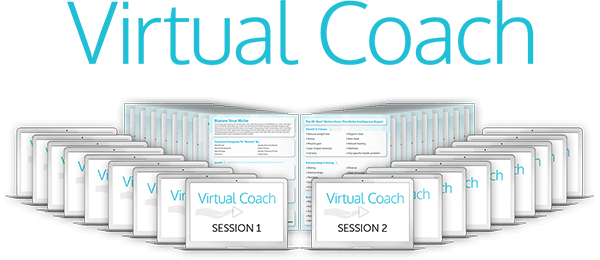 Virtual Coach 2017 Review