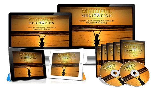 Mindful Meditation Review