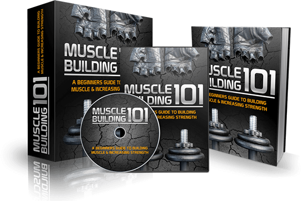 Muscle Building 101 PLR Pack Review