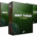 MINT Agency Toolkit Review