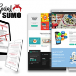 Local Social Sumo Review