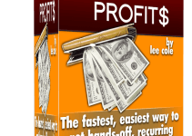 Audit Profit$ Review