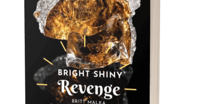 Bright Shiny Revenge Review
