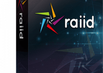 Raiid Review
