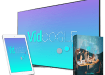 ViDoogle Review