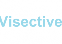 Visective Review