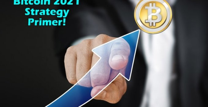 Bitcoin 2021 Strategy Planner W/Giveaway Rights Review