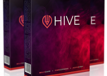 Hive The World's First Graphic Design Solution Review
