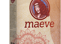 Maeve Review – Harness The Power Of Google 2021